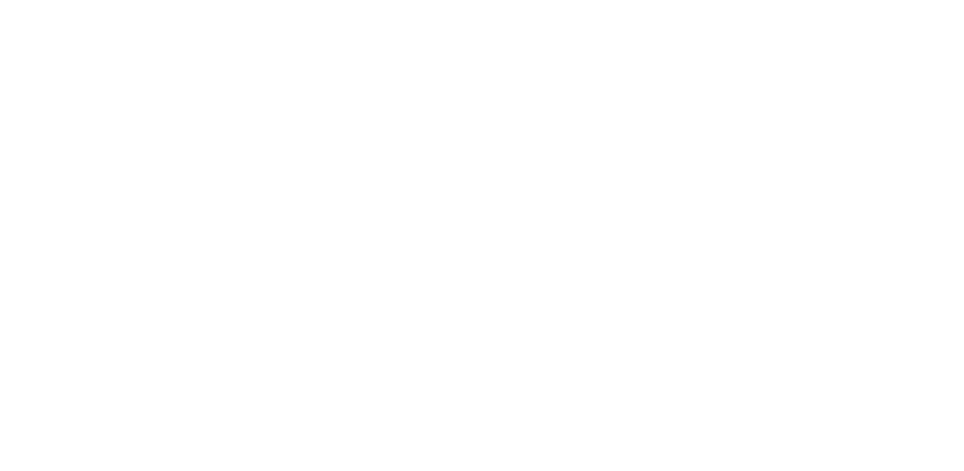 LifeSighted Logo